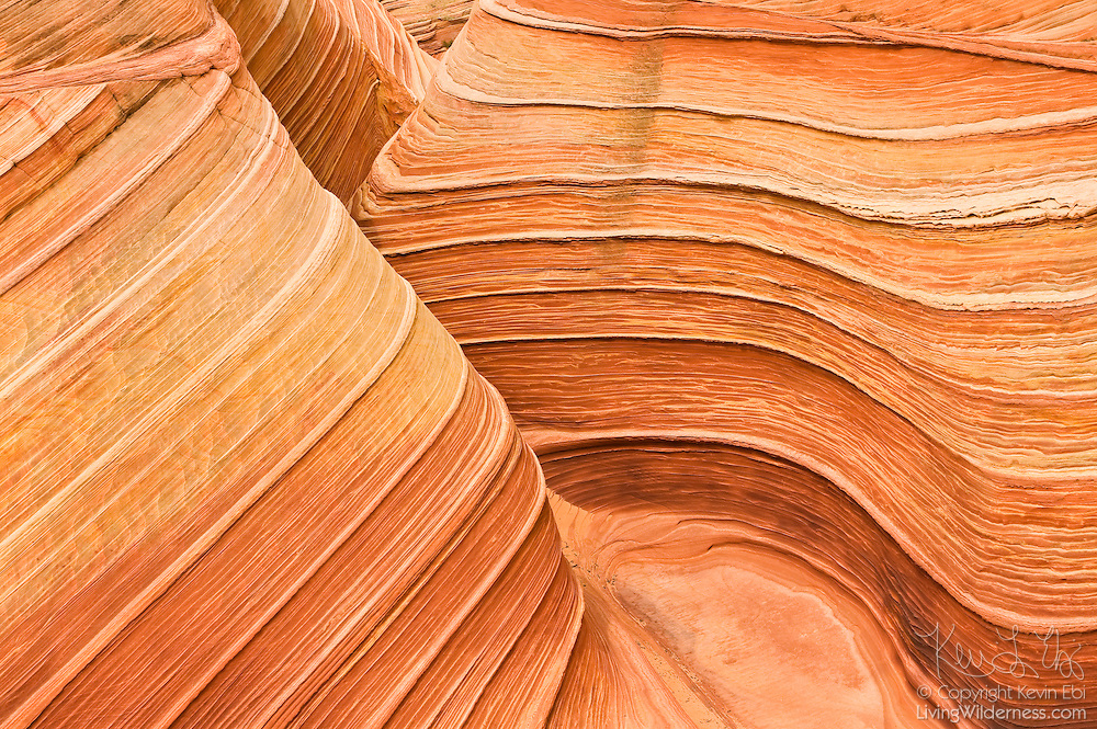 A narrow canyon winds through a petrified sand dune located at the Wave, Coyote Buttes Wilderness, northern Arizona.