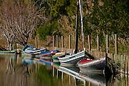 Albufera Nature Park in Valencia. Spain.