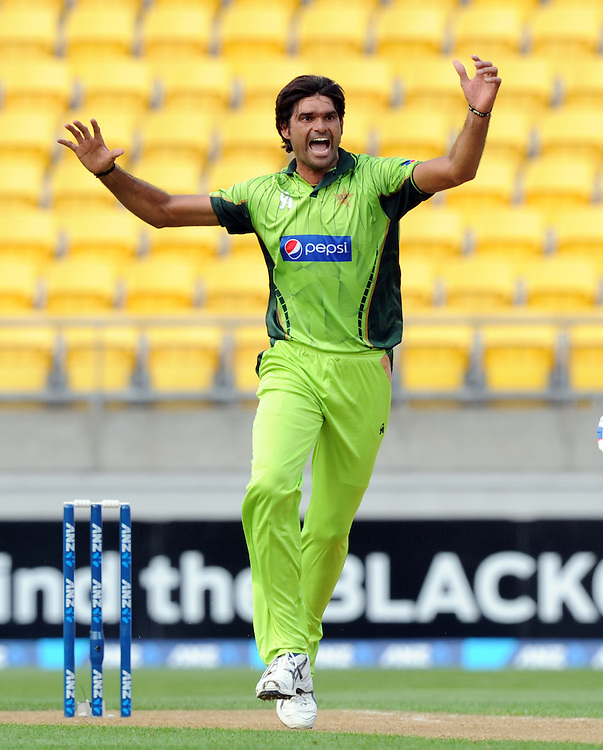 Pakistan's Mohammad Irfan unsuccessfully appeals the wicket of New Zealand's Martin Guptill in the 1st One Day International cricket match at Westpac Stadium, New Zealand, Saturday, January 31, 2015. Credit:SNPA / Ross Setford