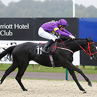 Lady Bellatrix and Daryl Byrne winning the 2.00 race