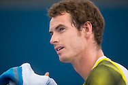 Andy MURRAY (GBR) portrait during his win against Grigor DIMITROV (BUL) in the mens singles final. Brisbane International Tennis Championship. Queensland Tennis Center, Tennyson, Brisbane, Queensland, Australia. 06/01/2013. Photo By Lucas Wroe