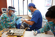 Kenji Saisho, M.D., D.D.S., treats a patient Tuesday, Dec. 13, 2011, at Central Coast Pediatric Dental Group in Salinas, California. Maria Placensia, R.D.A., is at left, and Crystal Sanchez, R.D.A., is at right.
