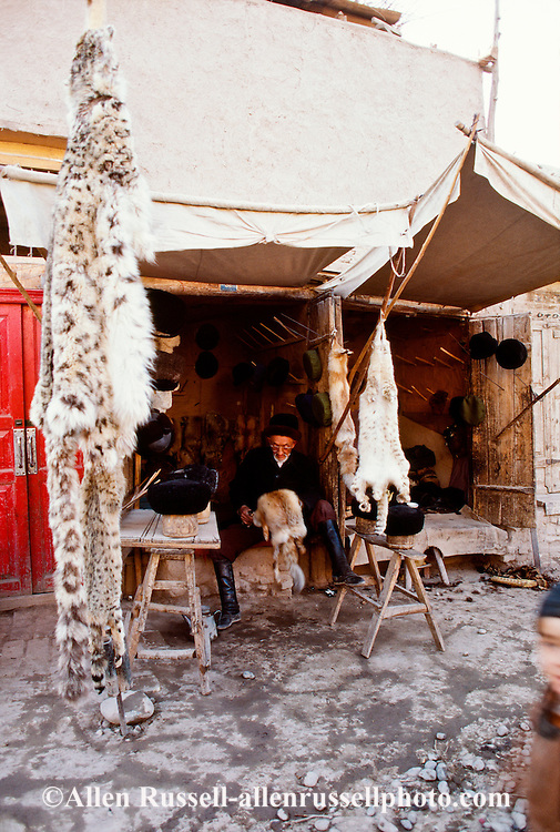Kashgar or Kasgar China, Xinjiang Province, Uyghur or Uygur Muslim fur shop with Snow Leopard pelt for sale, endangered species
