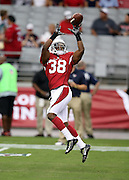 Arizona Cardinals running back Andre Ellington (38) leaps to catch a pass during pre game warmups before the 2014 NFL preseason football game against the Houston Texans on Saturday, Aug. 9, 2014 in Glendale, Ariz. The Cardinals won the game in a 32-0 shutout. ©Paul Anthony Spinelli