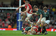 Photo © TOM DWYER / SECONDS LEFT IMAGES 2010 - Rugby Union - Invesco Perpetual Series - Wales v South Africa - 13/11/10 - Wales' Bradley Davies leaps in to assist James Hook who is on the floor having been tackled - at Millennium Stadium Cardiff Wales UK -  All rights reserved