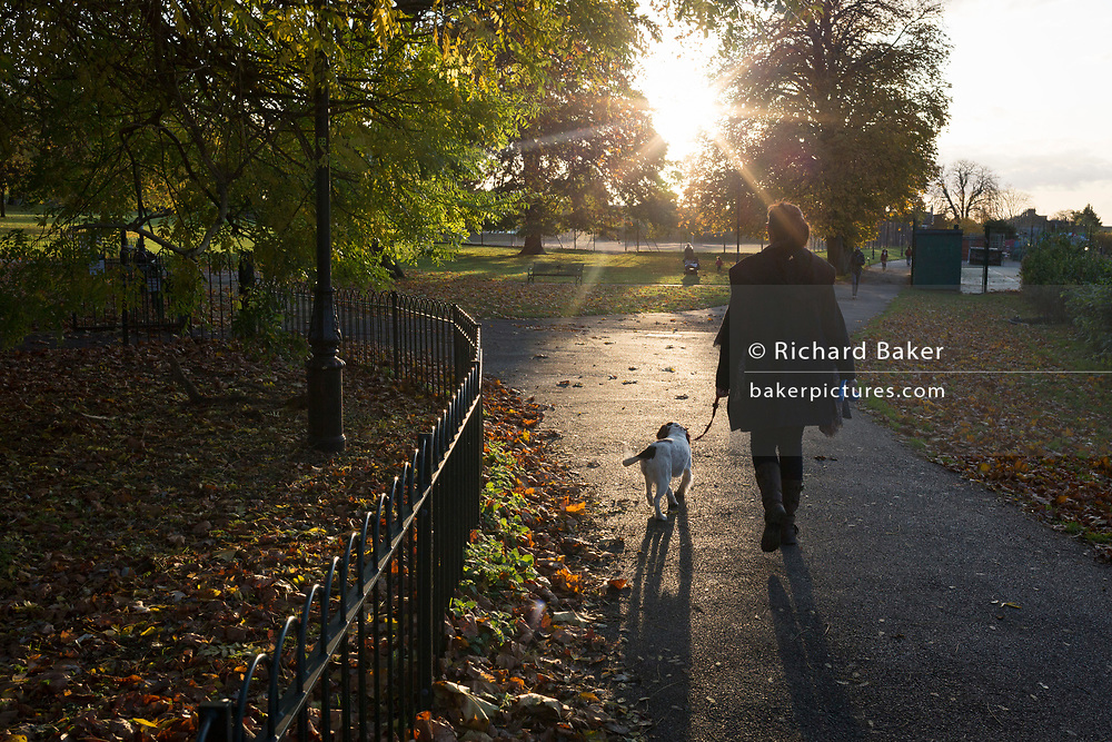 A lady walks her dog into afternoon, autumnal sunlight in Ruskin Park, on 7th November 2019, in Lambeth, London, England