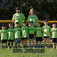 Jaguars T-Ball 2014