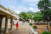 Tiruvannamalai, Tamil Nadu, India. The sacred. Arunachala Hill in the background