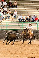 Will James Roundup, Ranch Rodeo, Working Ranch Horse, Hardin, Montana, Reata Brannaman.