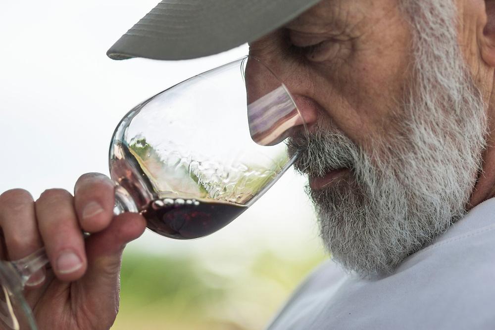 MACHIPONGO, VA - JUNE 22: John White, of Forest Grove, Oregon, samples a taste of Church Creek Merlot at Chatham Vineyards on Sunday, June 22nd, 2014 near Machipongo, Va. (Photo by Jay Westcott/For The Washington Post)