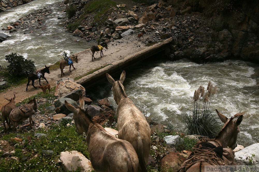 A recompilation of several images picturing the relationship of Andean farmer and indigenous communities and their utilization of water resources.