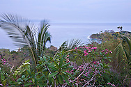 Tropical foliage and ocean views along the wildlife rich coastline of the Osa peninsula, Costa Rica