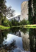 Jauron Reunion in Yosemite 2015