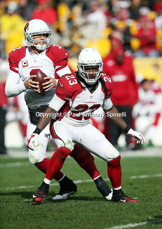 Arizona Cardinals running back Chris Johnson (23) pass blocks for Arizona Cardinals quarterback Carson Palmer (3) during the 2015 NFL week 6 regular season football game against the Pittsburgh Steelers on Sunday, Oct. 18, 2015 in Pittsburgh. The Steelers won the game 25-13. (©Paul Anthony Spinelli)