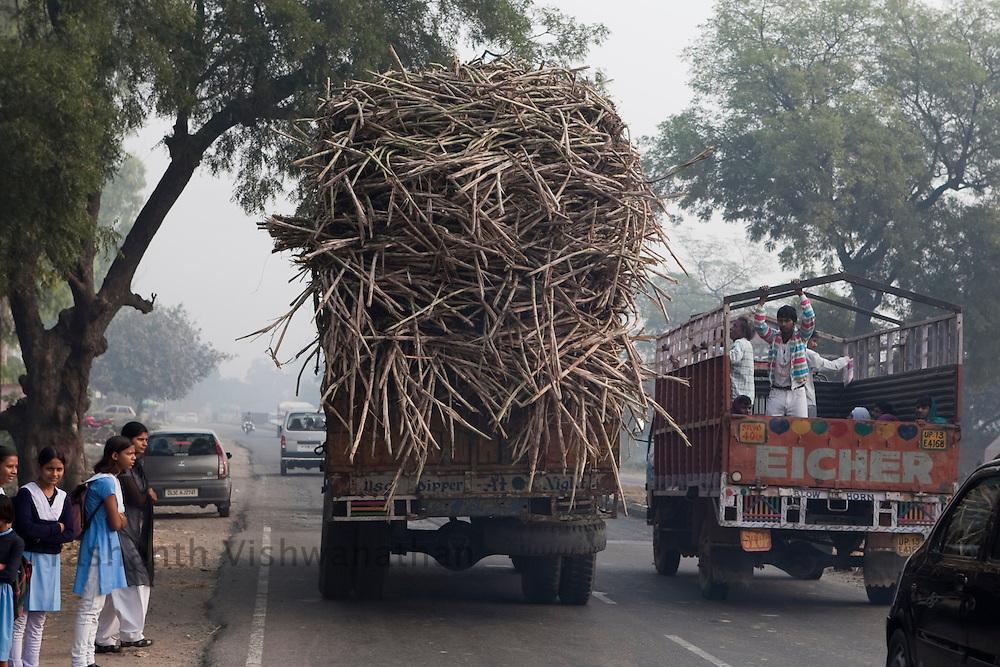 A truck laden to a nearby sugar mill in the outskirts of Modi Nagar, in Uttarpradesh, India, on Friday, November 12, 2010. Photographer: Prashanth Vishwanathan/Bloomberg News