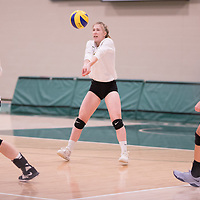 2nd year setter Kirstin Greve (17) of the Regina Cougars in action during Women's Volleyball home game on February 9 at Centre for Kinesiology, Health and Sport. Credit: Arthur Ward/Arthur Images