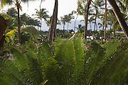 Hyatt Kauai, Kauai, Hawaii