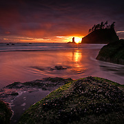The sunset is reflected over the cool waters of the Pacific Ocean on Second Beach of Olympic National Park, Washington.