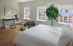 1700_Clarendon Arlington, VA The Gaslight 1700_Clarendon Arlington, VA Master Bedroom