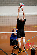 VOLLEYBALL<br /> <br /> Downer NZ Masters Games 2019<br /> 20190207<br /> WHANGANUI, NEW ZEALAND<br /> Photo ANNETTE	JOHNSTON CMGSPORT<br /> WWW.CMGSPORT.CO.NZ