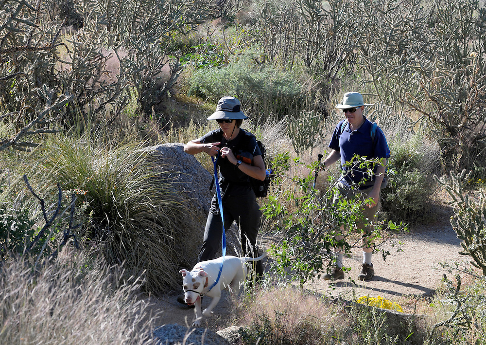 "pvc092611d/9-26-11/go.  Catherine Waters (CQ), left, and her friend Elliot Essman (CQ), right, hike in the foothills with Waters' dog ""Cleo"" in the Sandia foothills Sunday Sept. 25, 2011.  Waters said she was packing a GPS device, lots of water, rain gear, food, and Essman carried a snake bite kit, bear pepper spray, a first aid kit, and adequate water.  (Pat Vasquez-Cunningham/Journal)"