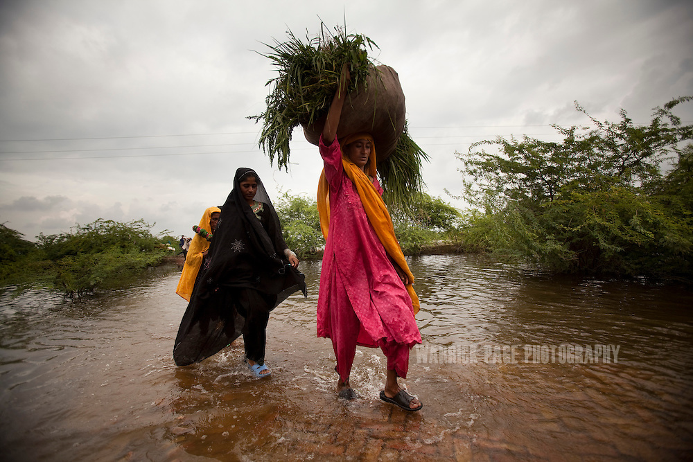 Women carry salvaged crops through floodwaters to their makeshift refuge camp, on 10 September, 2011, in Fatehpur, Pakistan. More than 17% of children in the flood areas are severely acutely malnourished and 67% of livestock has been destroyed after torrential monsoon rains, reminiscent of the 2010 floods that devastated Pakistan, have reportedly already killed over 200 people, left 300,000 homeless and affected over 7 million. (Photo by Warrick Page)