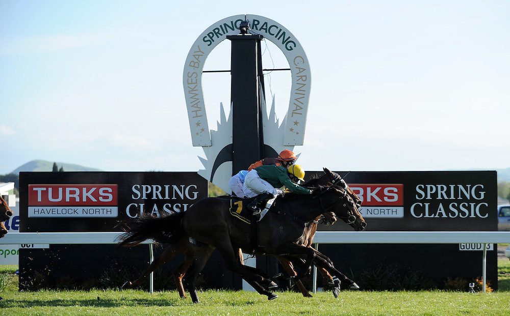 Johnathon Parkes rides Ransomed and wins the Group 1 Turks Spring Classic, Hastings Racecourse, Hawkes Bay, Saturday, October 05, 2013. Credit: SNPA/Kerry Marshall