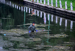 August 16, 2017 - Shenyang, Shenyang, China - Shenyang, CHINA-16th August 2017: (EDITORIAL USE ONLY. CHINA OUT) ..Workers are busy with removing water weeds at a canal in Shenyang, northeast China's Liaoning Province, August 16th, 2017. (Credit Image: © SIPA Asia via ZUMA Wire)