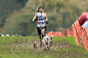 Male canicross competitor during the WSA Dryland World Championship 2019 at Firle Country Estate in the South Downs National Park, Lewes, Sussex, United Kingdom on 16 November 2019.