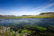 Hot Creek near Mammoth Lakes, Calfornia