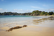 Butterfield Beach, Stewart Island, New Zealand