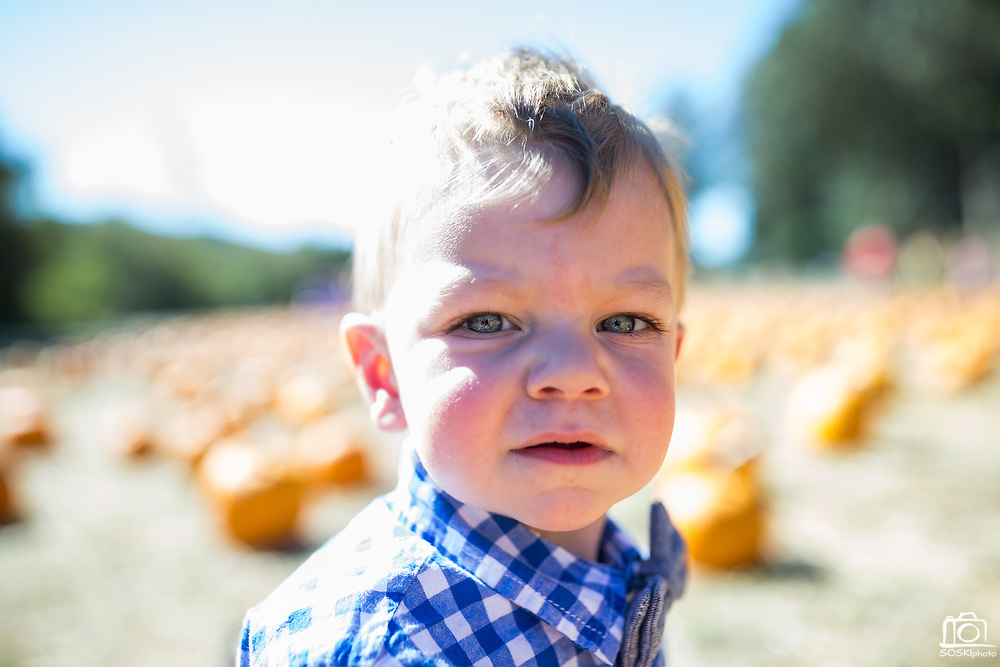 Nicholas plays at the Pumpkin Patch in Half Moon Bay, California, on October 25, 2017. (Stan Olszewski/SOSKIphoto)