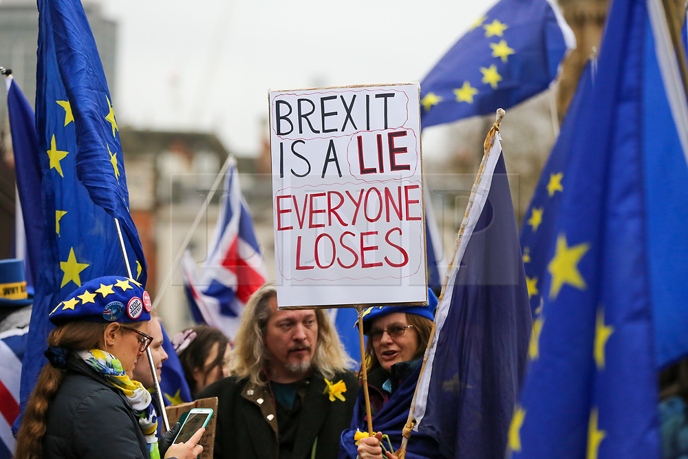 """© Licensed to London News Pictures. 30/01/2020. London, UK. A Pro-European supporter hold a """"BREXIT IS A LIE EVERYONE LOSES"""" sign outside Houses of Parliament on the day before Brexit Day.  The UK will leave the European Union at 11pm on the 31 January 2020. Thereafter will be a transition period until the end of 2020, while the UK and EU negotiate additional arrangements. Photo credit: Dinendra Haria/LNP"""