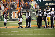 (L-R) NFL field judge Buddy Horton (82), umpire Mark Pellis (131), line judge Ron Marinucci (107), and referee John Parry (132) try to regain order and clear the field of unnecessary players and coaches after Cincinnati Bengals running back Giovani Bernard (25) gets hit hard by Pittsburgh Steelers inside linebacker Ryan Shazier (50) causing a third quarter fumble, recovered by Shazier, and starting a player melee over no penalty call for unnecessary roughness and leading with the helmet during the NFL AFC Wild Card playoff football game against the Pittsburgh Steelers on Saturday, Jan. 9, 2016 in Cincinnati. The Steelers won the game 18-16. (©Paul Anthony Spinelli)