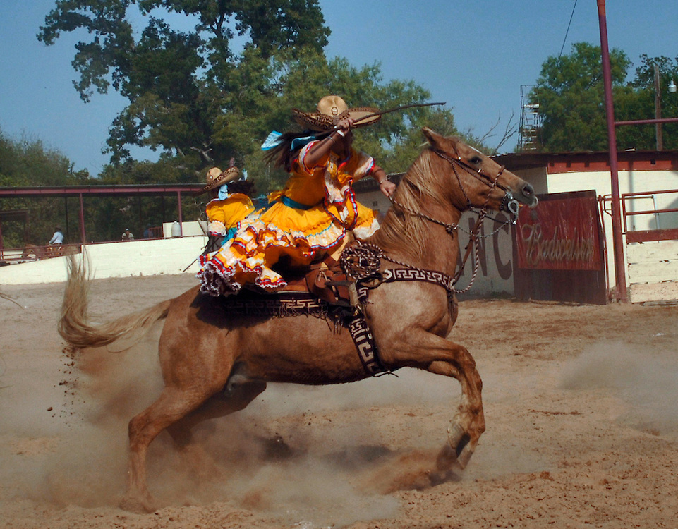 A member of the Estrellas Tejanas rides her horse in between other horses during the La Raya event. The challenge is to see how far the horse can skid while up on it's hind legs.  Women, Escaramusa would work with the Mexican Infantry to create diversion on the battle field by getting their horses to kick up dust clouds, simulating the trampled ground of additional unseen forces. This was during the time of the Mexican Revolutionary War.  (Photo by Lance Cheung)