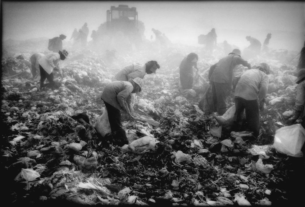 Squatters follow earth mover, Phnom Penh city dump, Cambodia.