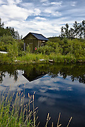 Peaceful summer afternoon at the fishing pond in rural Alberta, Canada.2700x4500 (original size)