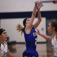 Women's Basketball: North Central University Rams vs. The College of St. Scholastica Saints