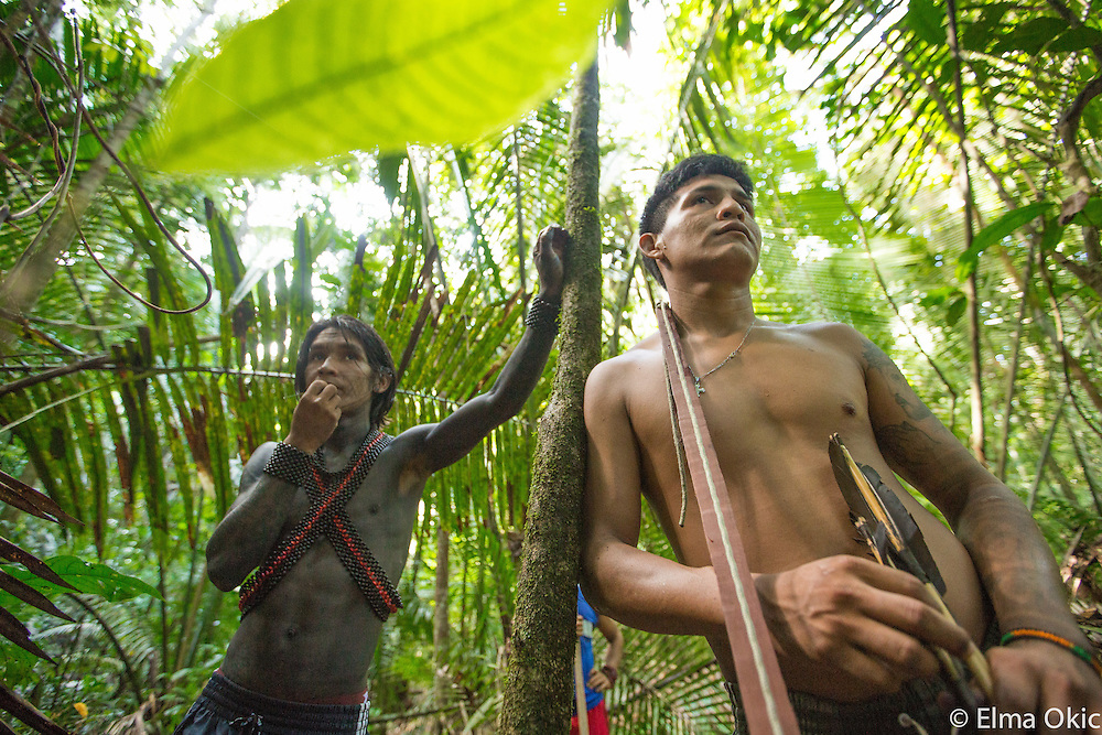 A local riverine community of Montahna e Mangabal intervention on illegal exploitation of the Acai Palm Tree prized 'palmito', the heart of palm. The riverine community had the support of the Munduruku, the local indigenous people. The two communities live in close proximity on the Tapajos River, State of Para, Brazil.