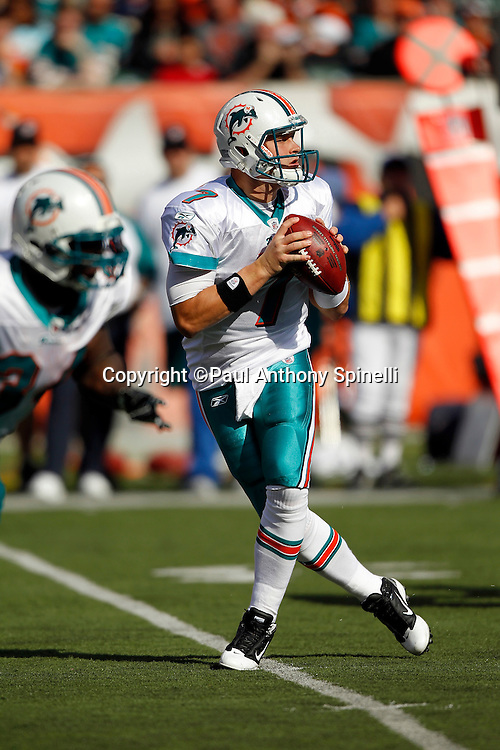 Miami Dolphins quarterback Chad Henne (7) drops back to pass during the NFL week 8 football game against the Cincinnati Bengals on Sunday, October 31, 2010 in Cincinnati, Ohio. The Dolphins won the game 22-14. (©Paul Anthony Spinelli)