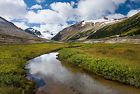 Salal Peak (right) 2530 m (8301 ft) and headwaters of Salal Creek, Athelney Pass Coast Mountains British Columbia Canada