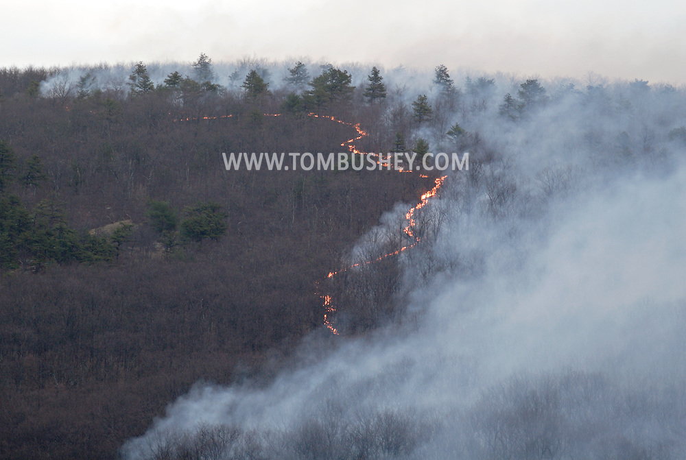 Wurtsboro, N.Y.  - A forest fire burns on the Shawangunk Ridge in Sullivan County on April 18, 2009.