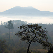 Thung Salaeng Luang National Park, Thailand.