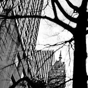 View from central park on the surroundings building of the fifth avenue
