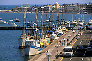 MEXICO, MAJOR CITIES Veracruz; harbor w/fishing boats tied up along Blvd Camacho, popular seaside promenade