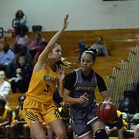 Women's Basketball: Methodist University Monarchs vs.