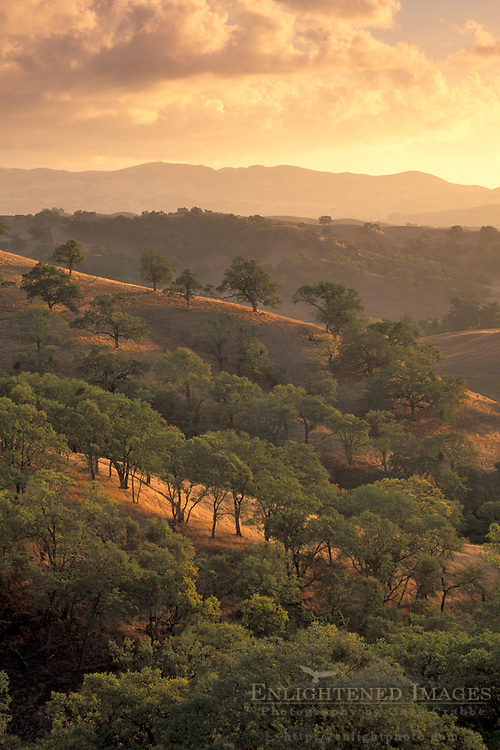 Clouds at sunset over golden hills and oak trees, Mount Diablo State Park, Contra Costa, California