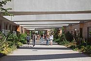 Ecole Internatiomale ITER, Manosque, France. Architect Rudy Ricciotti
