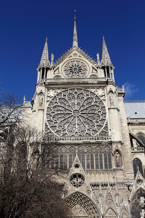 View of the massive window on the south side of Notre Dame, Paris
