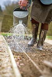 Seed sowing outdoors - watering the drill